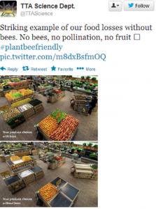 Pollination 3