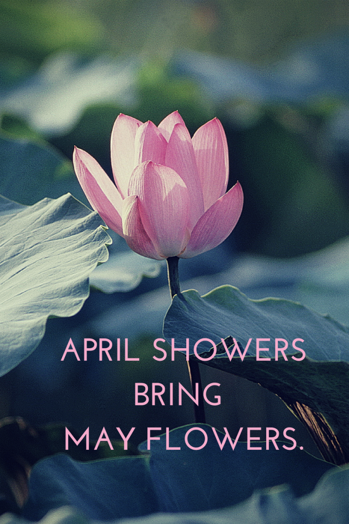 April showers bring forth May flowers.